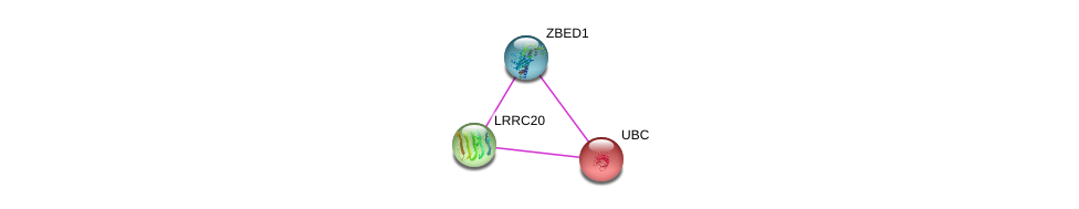 http://string-db.org/version_10/api/image/networkList?limit=0&targetmode=proteins&caller_identity=gene_cards&network_flavor=evidence&identifiers=9606.ENSP00000348043%0d%0a9606.ENSP00000344818%0d%0a9606.ENSP00000370616%0d%0a