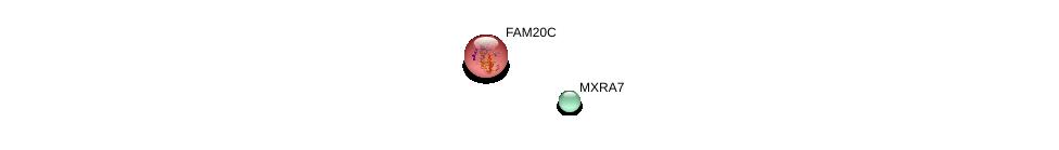 http://string-db.org/version_10/api/image/networkList?limit=0&targetmode=proteins&caller_identity=gene_cards&network_flavor=evidence&identifiers=9606.ENSP00000348050%0d%0a9606.ENSP00000322323%0d%0a