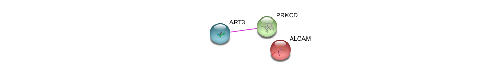 http://string-db.org/version_10/api/image/networkList?limit=0&targetmode=proteins&caller_identity=gene_cards&network_flavor=evidence&identifiers=9606.ENSP00000348064%0d%0a9606.ENSP00000331602%0d%0a9606.ENSP00000305988%0d%0a