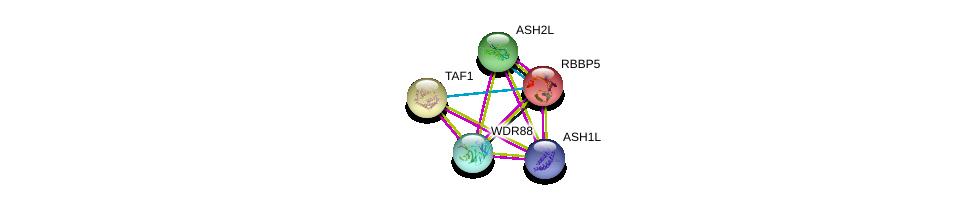http://string-db.org/version_10/api/image/networkList?limit=0&targetmode=proteins&caller_identity=gene_cards&network_flavor=evidence&identifiers=9606.ENSP00000348129%0d%0a9606.ENSP00000340896%0d%0a9606.ENSP00000264515%0d%0a9606.ENSP00000376204%0d%0a9606.ENSP00000376204%0d%0a9606.ENSP00000276072%0d%0a