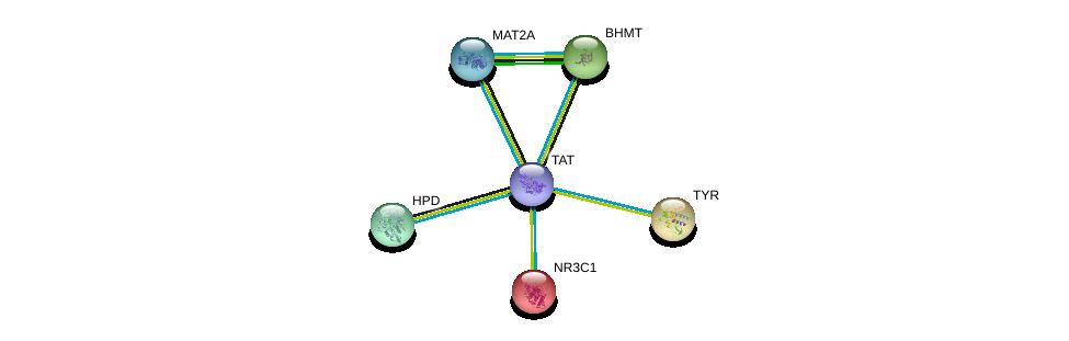 http://string-db.org/version_10/api/image/networkList?limit=0&targetmode=proteins&caller_identity=gene_cards&network_flavor=evidence&identifiers=9606.ENSP00000348234%0d%0a9606.ENSP00000231509%0d%0a9606.ENSP00000263321%0d%0a9606.ENSP00000274353%0d%0a9606.ENSP00000289004%0d%0a9606.ENSP00000303147%0d%0a