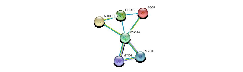 http://string-db.org/version_10/api/image/networkList?limit=0&targetmode=proteins&caller_identity=gene_cards&network_flavor=evidence&identifiers=9606.ENSP00000348349%0d%0a9606.ENSP00000219409%0d%0a9606.ENSP00000321971%0d%0a9606.ENSP00000358994%0d%0a9606.ENSP00000352834%0d%0a9606.ENSP00000216373%0d%0a