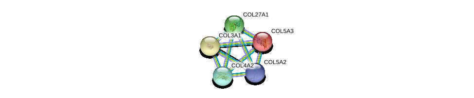 http://string-db.org/version_10/api/image/networkList?limit=0&targetmode=proteins&caller_identity=gene_cards&network_flavor=evidence&identifiers=9606.ENSP00000348385%0d%0a9606.ENSP00000304408%0d%0a9606.ENSP00000304408%0d%0a9606.ENSP00000264828%0d%0a9606.ENSP00000364000%0d%0a9606.ENSP00000353654%0d%0a