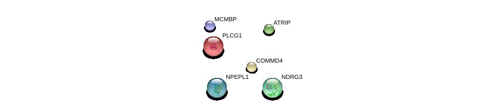 http://string-db.org/version_10/api/image/networkList?limit=0&targetmode=proteins&caller_identity=gene_cards&network_flavor=evidence&identifiers=9606.ENSP00000348395%0d%0a9606.ENSP00000353098%0d%0a9606.ENSP00000267935%0d%0a9606.ENSP00000244007%0d%0a9606.ENSP00000345292%0d%0a9606.ENSP00000323099%0d%0a