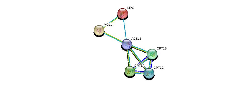 http://string-db.org/version_10/api/image/networkList?limit=0&targetmode=proteins&caller_identity=gene_cards&network_flavor=evidence&identifiers=9606.ENSP00000348429%0d%0a9606.ENSP00000265641%0d%0a9606.ENSP00000312189%0d%0a9606.ENSP00000319343%0d%0a9606.ENSP00000261292%0d%0a9606.ENSP00000265052%0d%0a