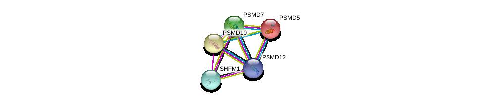 http://string-db.org/version_10/api/image/networkList?limit=0&targetmode=proteins&caller_identity=gene_cards&network_flavor=evidence&identifiers=9606.ENSP00000348442%0d%0a9606.ENSP00000210313%0d%0a9606.ENSP00000217958%0d%0a9606.ENSP00000219313%0d%0a9606.ENSP00000248566%0d%0a9606.ENSP00000248566%0d%0a