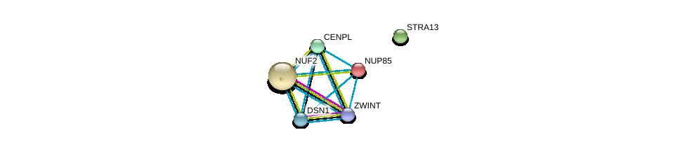 http://string-db.org/version_10/api/image/networkList?limit=0&targetmode=proteins&caller_identity=gene_cards&network_flavor=evidence&identifiers=9606.ENSP00000348527%0d%0a9606.ENSP00000362850%0d%0a9606.ENSP00000363055%0d%0a9606.ENSP00000302951%0d%0a9606.ENSP00000245544%0d%0a9606.ENSP00000271452%0d%0a