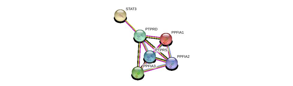 http://string-db.org/version_10/api/image/networkList?limit=0&targetmode=proteins&caller_identity=gene_cards&network_flavor=evidence&identifiers=9606.ENSP00000348812%0d%0a9606.ENSP00000253925%0d%0a9606.ENSP00000450337%0d%0a9606.ENSP00000335614%0d%0a9606.ENSP00000264657%0d%0a9606.ENSP00000349932%0d%0a