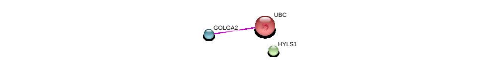 http://string-db.org/version_10/api/image/networkList?limit=0&targetmode=proteins&caller_identity=gene_cards&network_flavor=evidence&identifiers=9606.ENSP00000348815%0d%0a9606.ENSP00000344818%0d%0a9606.ENSP00000416097%0d%0a
