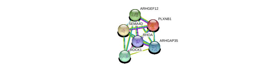 http://string-db.org/version_10/api/image/networkList?limit=0&targetmode=proteins&caller_identity=gene_cards&network_flavor=evidence&identifiers=9606.ENSP00000348822%0d%0a9606.ENSP00000296440%0d%0a9606.ENSP00000380942%0d%0a9606.ENSP00000382697%0d%0a9606.ENSP00000385720%0d%0a9606.ENSP00000400175%0d%0a