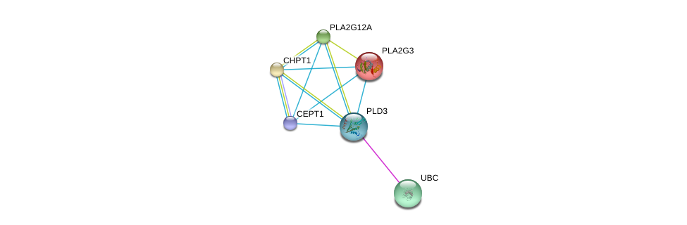 http://string-db.org/version_10/api/image/networkList?limit=0&targetmode=proteins&caller_identity=gene_cards&network_flavor=evidence&identifiers=9606.ENSP00000348901%0d%0a9606.ENSP00000344818%0d%0a9606.ENSP00000349696%0d%0a9606.ENSP00000215885%0d%0a9606.ENSP00000229266%0d%0a9606.ENSP00000243501%0d%0a
