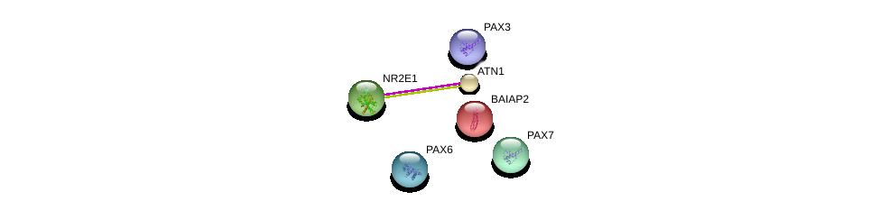 http://string-db.org/version_10/api/image/networkList?limit=0&targetmode=proteins&caller_identity=gene_cards&network_flavor=evidence&identifiers=9606.ENSP00000349076%0d%0a9606.ENSP00000368401%0d%0a9606.ENSP00000375921%0d%0a9606.ENSP00000364524%0d%0a9606.ENSP00000357982%0d%0a9606.ENSP00000316338%0d%0a