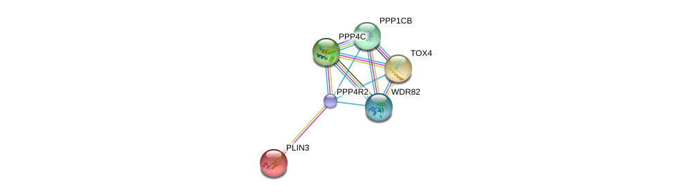 http://string-db.org/version_10/api/image/networkList?limit=0&targetmode=proteins&caller_identity=gene_cards&network_flavor=evidence&identifiers=9606.ENSP00000349124%0d%0a9606.ENSP00000279387%0d%0a9606.ENSP00000221957%0d%0a9606.ENSP00000262709%0d%0a9606.ENSP00000296122%0d%0a9606.ENSP00000296490%0d%0a