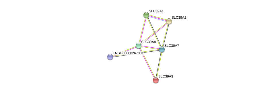 http://string-db.org/version_10/api/image/networkList?limit=0&targetmode=proteins&caller_identity=gene_cards&network_flavor=evidence&identifiers=9606.ENSP00000349174%0d%0a9606.ENSP00000467958%0d%0a9606.ENSP00000309710%0d%0a9606.ENSP00000269740%0d%0a9606.ENSP00000298681%0d%0a9606.ENSP00000350278%0d%0a