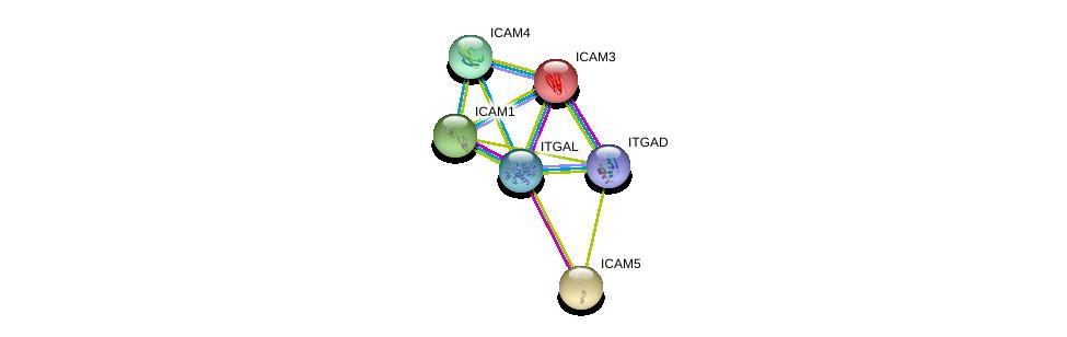 http://string-db.org/version_10/api/image/networkList?limit=0&targetmode=proteins&caller_identity=gene_cards&network_flavor=evidence&identifiers=9606.ENSP00000349252%0d%0a9606.ENSP00000264832%0d%0a9606.ENSP00000160262%0d%0a9606.ENSP00000221980%0d%0a9606.ENSP00000342114%0d%0a9606.ENSP00000373854%0d%0a