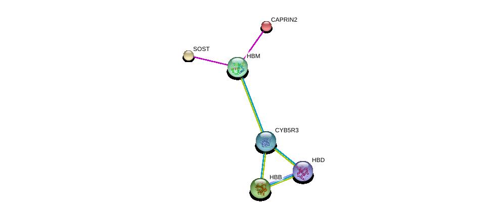 http://string-db.org/version_10/api/image/networkList?limit=0&targetmode=proteins&caller_identity=gene_cards&network_flavor=evidence&identifiers=9606.ENSP00000349270%0d%0a9606.ENSP00000301691%0d%0a9606.ENSP00000298892%0d%0a9606.ENSP00000369654%0d%0a9606.ENSP00000333994%0d%0a9606.ENSP00000354468%0d%0a