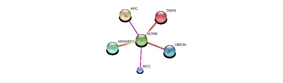 http://string-db.org/version_10/api/image/networkList?limit=0&targetmode=proteins&caller_identity=gene_cards&network_flavor=evidence&identifiers=9606.ENSP00000349486%0d%0a9606.ENSP00000364893%0d%0a9606.ENSP00000381045%0d%0a9606.ENSP00000257430%0d%0a9606.ENSP00000200457%0d%0a9606.ENSP00000386227%0d%0a