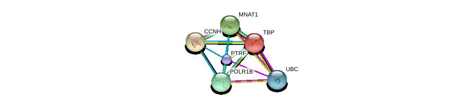 http://string-db.org/version_10/api/image/networkList?limit=0&targetmode=proteins&caller_identity=gene_cards&network_flavor=evidence&identifiers=9606.ENSP00000349541%0d%0a9606.ENSP00000344818%0d%0a9606.ENSP00000230354%0d%0a9606.ENSP00000256897%0d%0a9606.ENSP00000261245%0d%0a9606.ENSP00000263331%0d%0a