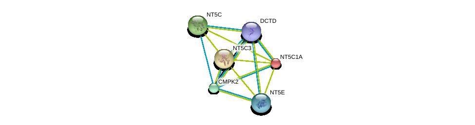 http://string-db.org/version_10/api/image/networkList?limit=0&targetmode=proteins&caller_identity=gene_cards&network_flavor=evidence&identifiers=9606.ENSP00000349576%0d%0a9606.ENSP00000235628%0d%0a9606.ENSP00000242210%0d%0a9606.ENSP00000245552%0d%0a9606.ENSP00000256722%0d%0a9606.ENSP00000257770%0d%0a