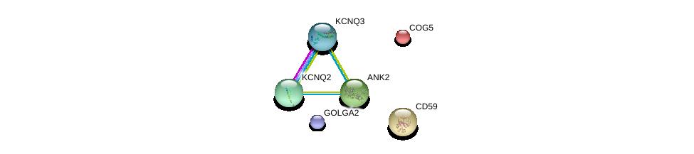 http://string-db.org/version_10/api/image/networkList?limit=0&targetmode=proteins&caller_identity=gene_cards&network_flavor=evidence&identifiers=9606.ENSP00000349588%0d%0a9606.ENSP00000297135%0d%0a9606.ENSP00000373648%0d%0a9606.ENSP00000340210%0d%0a9606.ENSP00000352035%0d%0a9606.ENSP00000416097%0d%0a