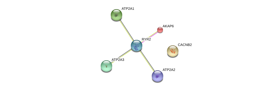http://string-db.org/version_10/api/image/networkList?limit=0&targetmode=proteins&caller_identity=gene_cards&network_flavor=evidence&identifiers=9606.ENSP00000349595%0d%0a9606.ENSP00000440045%0d%0a9606.ENSP00000353072%0d%0a9606.ENSP00000280979%0d%0a9606.ENSP00000320025%0d%0a9606.ENSP00000355533%0d%0a