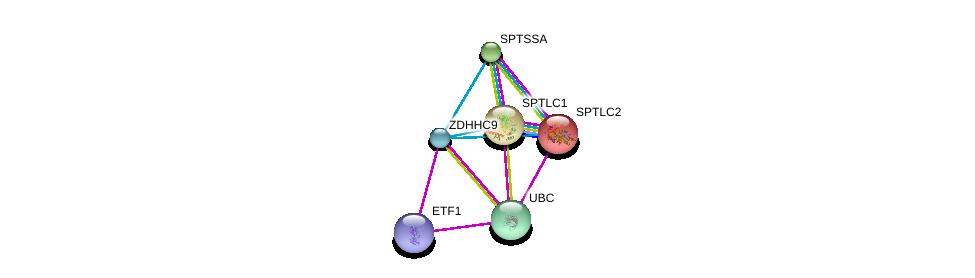 http://string-db.org/version_10/api/image/networkList?limit=0&targetmode=proteins&caller_identity=gene_cards&network_flavor=evidence&identifiers=9606.ENSP00000349689%0d%0a9606.ENSP00000344818%0d%0a9606.ENSP00000353741%0d%0a9606.ENSP00000216484%0d%0a9606.ENSP00000262554%0d%0a9606.ENSP00000298130%0d%0a