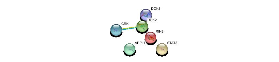 http://string-db.org/version_10/api/image/networkList?limit=0&targetmode=proteins&caller_identity=gene_cards&network_flavor=evidence&identifiers=9606.ENSP00000349727%0d%0a9606.ENSP00000264657%0d%0a9606.ENSP00000288266%0d%0a9606.ENSP00000216487%0d%0a9606.ENSP00000300574%0d%0a9606.ENSP00000276420%0d%0a