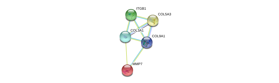http://string-db.org/version_10/api/image/networkList?limit=0&targetmode=proteins&caller_identity=gene_cards&network_flavor=evidence&identifiers=9606.ENSP00000349790%0d%0a9606.ENSP00000304408%0d%0a9606.ENSP00000304408%0d%0a9606.ENSP00000303351%0d%0a9606.ENSP00000264828%0d%0a9606.ENSP00000260227%0d%0a
