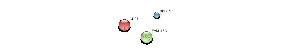 http://string-db.org/version_10/api/image/networkList?limit=0&targetmode=proteins&caller_identity=gene_cards&network_flavor=evidence&identifiers=9606.ENSP00000349902%0d%0a9606.ENSP00000360660%0d%0a9606.ENSP00000266557%0d%0a