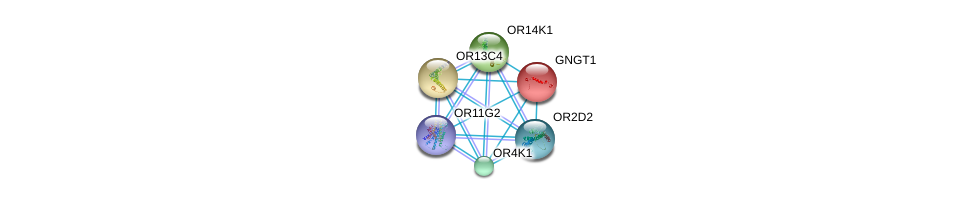 http://string-db.org/version_10/api/image/networkList?limit=0&targetmode=proteins&caller_identity=gene_cards&network_flavor=evidence&identifiers=9606.ENSP00000349930%0d%0a9606.ENSP00000248572%0d%0a9606.ENSP00000277216%0d%0a9606.ENSP00000283225%0d%0a9606.ENSP00000285600%0d%0a9606.ENSP00000299459%0d%0a