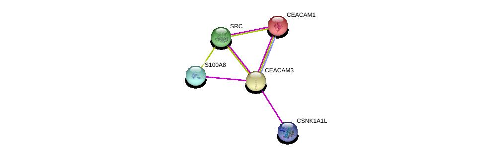 http://string-db.org/version_10/api/image/networkList?limit=0&targetmode=proteins&caller_identity=gene_cards&network_flavor=evidence&identifiers=9606.ENSP00000349971%0d%0a9606.ENSP00000357721%0d%0a9606.ENSP00000350941%0d%0a9606.ENSP00000161559%0d%0a9606.ENSP00000369126%0d%0a