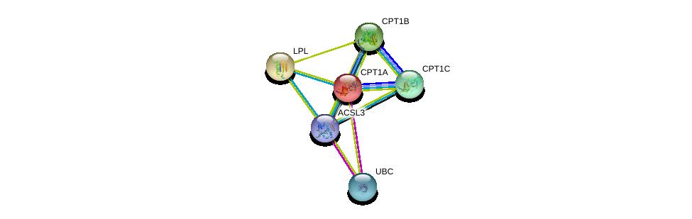 http://string-db.org/version_10/api/image/networkList?limit=0&targetmode=proteins&caller_identity=gene_cards&network_flavor=evidence&identifiers=9606.ENSP00000350012%0d%0a9606.ENSP00000344818%0d%0a9606.ENSP00000265641%0d%0a9606.ENSP00000312189%0d%0a9606.ENSP00000319343%0d%0a9606.ENSP00000309757%0d%0a