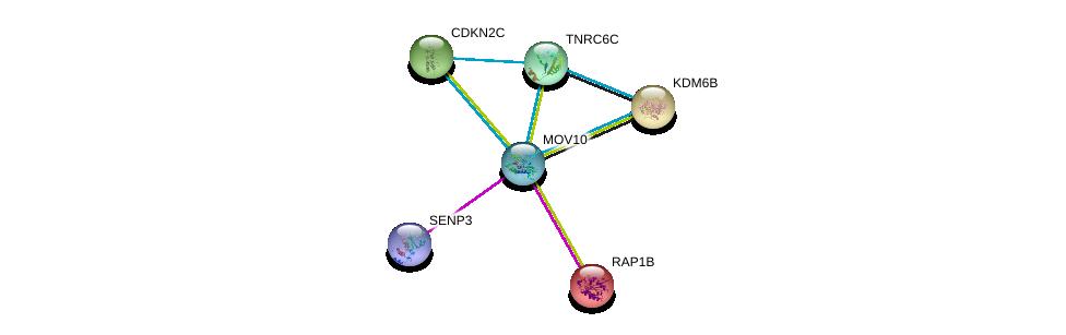 http://string-db.org/version_10/api/image/networkList?limit=0&targetmode=proteins&caller_identity=gene_cards&network_flavor=evidence&identifiers=9606.ENSP00000350028%0d%0a9606.ENSP00000250559%0d%0a9606.ENSP00000403712%0d%0a9606.ENSP00000336783%0d%0a9606.ENSP00000254846%0d%0a9606.ENSP00000262662%0d%0a