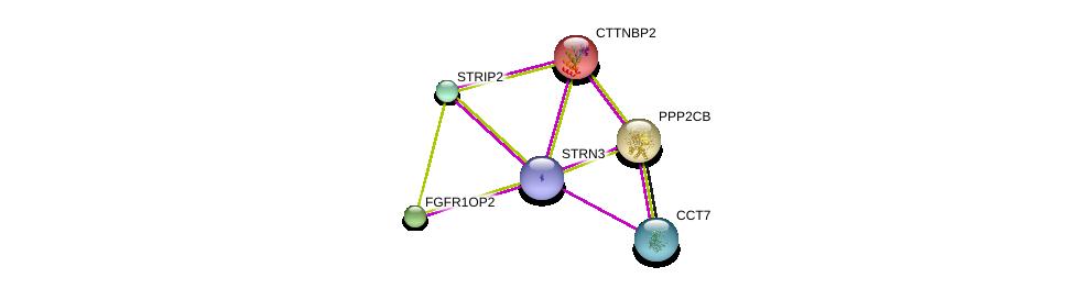 http://string-db.org/version_10/api/image/networkList?limit=0&targetmode=proteins&caller_identity=gene_cards&network_flavor=evidence&identifiers=9606.ENSP00000350071%0d%0a9606.ENSP00000160373%0d%0a9606.ENSP00000221138%0d%0a9606.ENSP00000229395%0d%0a9606.ENSP00000249344%0d%0a9606.ENSP00000258091%0d%0a