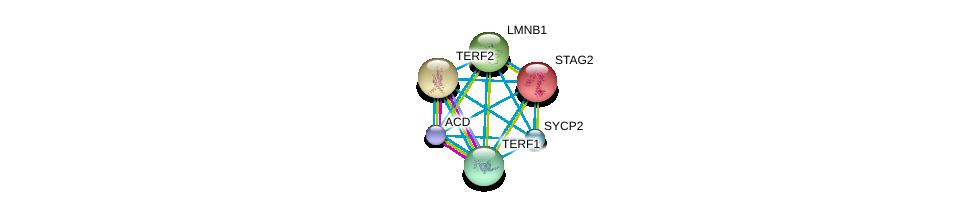 http://string-db.org/version_10/api/image/networkList?limit=0&targetmode=proteins&caller_identity=gene_cards&network_flavor=evidence&identifiers=9606.ENSP00000350162%0d%0a9606.ENSP00000377496%0d%0a9606.ENSP00000218089%0d%0a9606.ENSP00000254942%0d%0a9606.ENSP00000261366%0d%0a9606.ENSP00000276603%0d%0a
