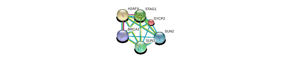 http://string-db.org/version_10/api/image/networkList?limit=0&targetmode=proteins&caller_identity=gene_cards&network_flavor=evidence&identifiers=9606.ENSP00000350162%0d%0a9606.ENSP00000418960%0d%0a9606.ENSP00000385616%0d%0a9606.ENSP00000384015%0d%0a9606.ENSP00000372689%0d%0a9606.ENSP00000364310%0d%0a