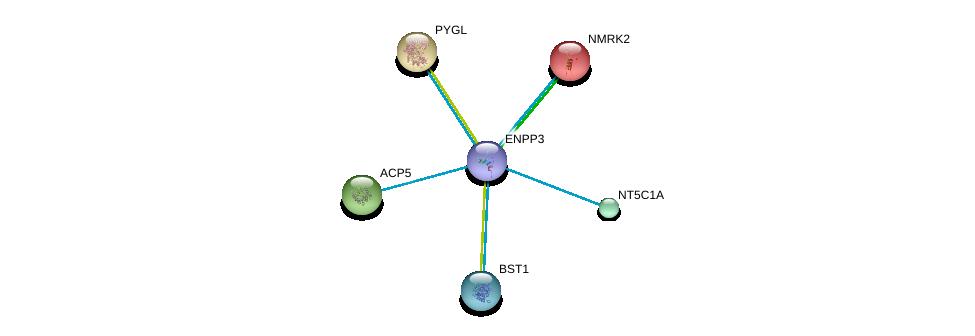 http://string-db.org/version_10/api/image/networkList?limit=0&targetmode=proteins&caller_identity=gene_cards&network_flavor=evidence&identifiers=9606.ENSP00000350265%0d%0a9606.ENSP00000265016%0d%0a9606.ENSP00000168977%0d%0a9606.ENSP00000216392%0d%0a9606.ENSP00000218758%0d%0a9606.ENSP00000235628%0d%0a