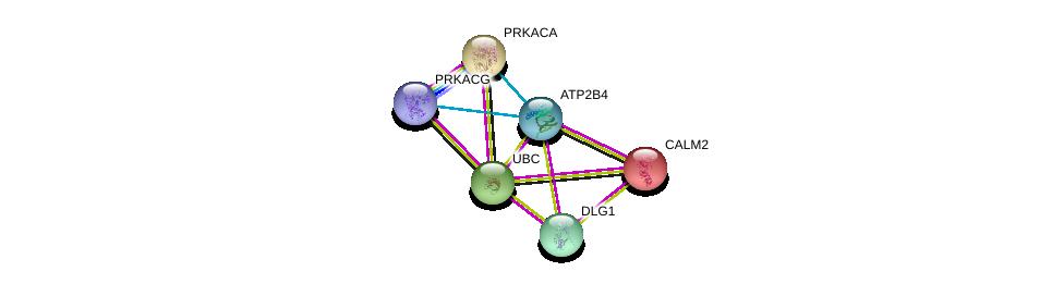 http://string-db.org/version_10/api/image/networkList?limit=0&targetmode=proteins&caller_identity=gene_cards&network_flavor=evidence&identifiers=9606.ENSP00000350310%0d%0a9606.ENSP00000344818%0d%0a9606.ENSP00000272298%0d%0a9606.ENSP00000345731%0d%0a9606.ENSP00000309591%0d%0a9606.ENSP00000366488%0d%0a