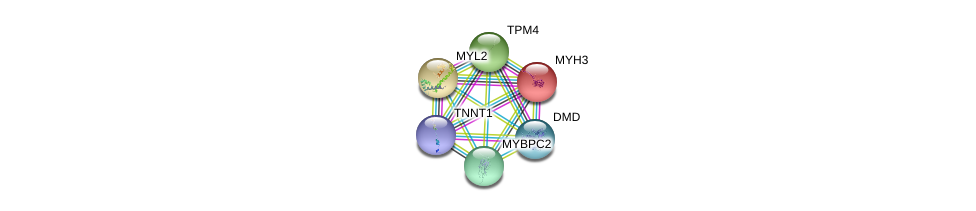 http://string-db.org/version_10/api/image/networkList?limit=0&targetmode=proteins&caller_identity=gene_cards&network_flavor=evidence&identifiers=9606.ENSP00000350332%0d%0a9606.ENSP00000345230%0d%0a9606.ENSP00000228841%0d%0a9606.ENSP00000226209%0d%0a9606.ENSP00000467176%0d%0a9606.ENSP00000354923%0d%0a