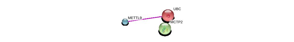 http://string-db.org/version_10/api/image/networkList?limit=0&targetmode=proteins&caller_identity=gene_cards&network_flavor=evidence&identifiers=9606.ENSP00000350377%0d%0a9606.ENSP00000344818%0d%0a9606.ENSP00000350874%0d%0a