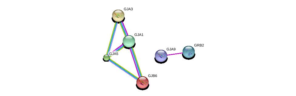 http://string-db.org/version_10/api/image/networkList?limit=0&targetmode=proteins&caller_identity=gene_cards&network_flavor=evidence&identifiers=9606.ENSP00000350415%0d%0a9606.ENSP00000339007%0d%0a9606.ENSP00000241124%0d%0a9606.ENSP00000241125%0d%0a9606.ENSP00000271348%0d%0a9606.ENSP00000282561%0d%0a