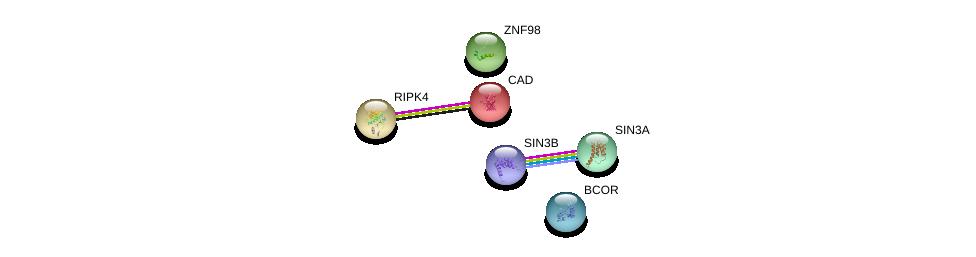 http://string-db.org/version_10/api/image/networkList?limit=0&targetmode=proteins&caller_identity=gene_cards&network_flavor=evidence&identifiers=9606.ENSP00000350418%0d%0a9606.ENSP00000353622%0d%0a9606.ENSP00000369131%0d%0a9606.ENSP00000367705%0d%0a9606.ENSP00000264705%0d%0a9606.ENSP00000332454%0d%0a