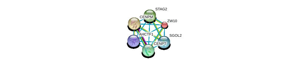 http://string-db.org/version_10/api/image/networkList?limit=0&targetmode=proteins&caller_identity=gene_cards&network_flavor=evidence&identifiers=9606.ENSP00000350447%0d%0a9606.ENSP00000355465%0d%0a9606.ENSP00000200135%0d%0a9606.ENSP00000215980%0d%0a9606.ENSP00000218089%0d%0a9606.ENSP00000219172%0d%0a