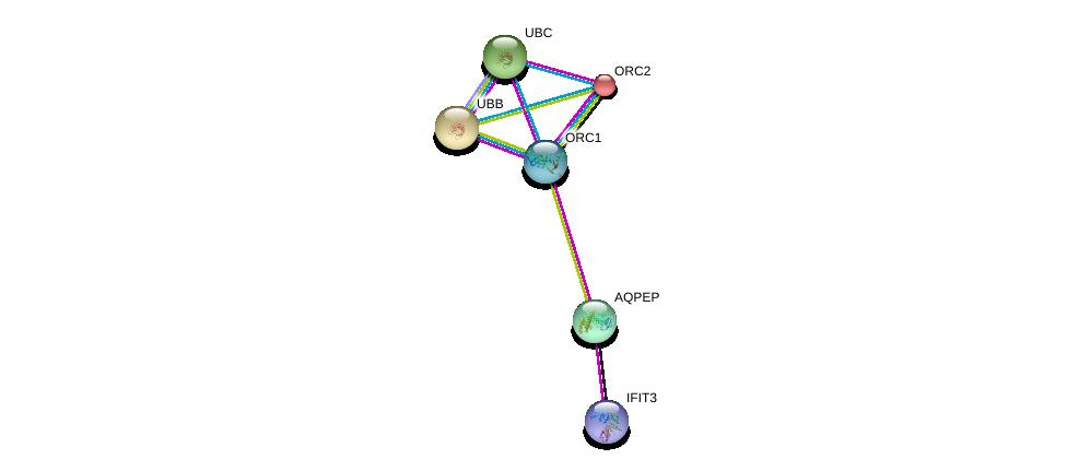 http://string-db.org/version_10/api/image/networkList?limit=0&targetmode=proteins&caller_identity=gene_cards&network_flavor=evidence&identifiers=9606.ENSP00000350541%0d%0a9606.ENSP00000360876%0d%0a9606.ENSP00000234296%0d%0a9606.ENSP00000360621%0d%0a9606.ENSP00000344818%0d%0a9606.ENSP00000304697%0d%0a
