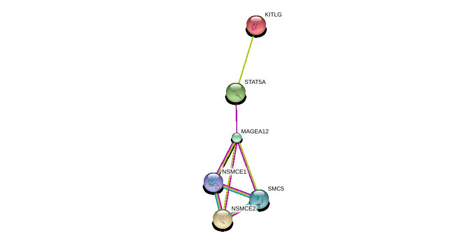 http://string-db.org/version_10/api/image/networkList?limit=0&targetmode=proteins&caller_identity=gene_cards&network_flavor=evidence&identifiers=9606.ENSP00000350592%0d%0a9606.ENSP00000341208%0d%0a9606.ENSP00000228280%0d%0a9606.ENSP00000354957%0d%0a9606.ENSP00000355077%0d%0a9606.ENSP00000287437%0d%0a