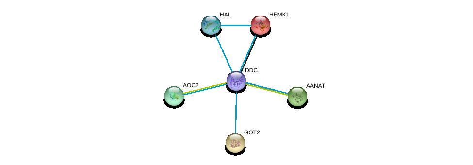 http://string-db.org/version_10/api/image/networkList?limit=0&targetmode=proteins&caller_identity=gene_cards&network_flavor=evidence&identifiers=9606.ENSP00000350616%0d%0a9606.ENSP00000250615%0d%0a9606.ENSP00000232854%0d%0a9606.ENSP00000245206%0d%0a9606.ENSP00000253799%0d%0a9606.ENSP00000261208%0d%0a