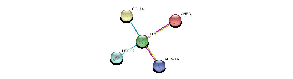 http://string-db.org/version_10/api/image/networkList?limit=0&targetmode=proteins&caller_identity=gene_cards&network_flavor=evidence&identifiers=9606.ENSP00000350630%0d%0a9606.ENSP00000332371%0d%0a9606.ENSP00000332371%0d%0a9606.ENSP00000363827%0d%0a9606.ENSP00000369960%0d%0a9606.ENSP00000204604%0d%0a