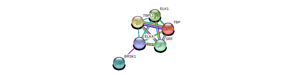 http://string-db.org/version_10/api/image/networkList?limit=0&targetmode=proteins&caller_identity=gene_cards&network_flavor=evidence&identifiers=9606.ENSP00000350681%0d%0a9606.ENSP00000310649%0d%0a9606.ENSP00000265354%0d%0a9606.ENSP00000237264%0d%0a9606.ENSP00000230354%0d%0a9606.ENSP00000247161%0d%0a