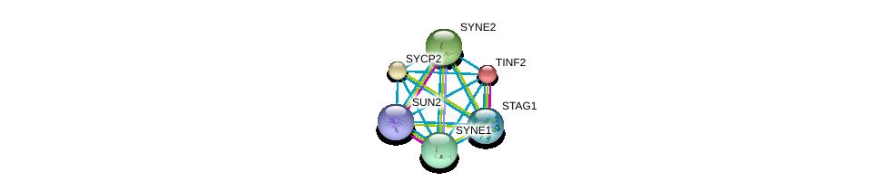 http://string-db.org/version_10/api/image/networkList?limit=0&targetmode=proteins&caller_identity=gene_cards&network_flavor=evidence&identifiers=9606.ENSP00000350719%0d%0a9606.ENSP00000385616%0d%0a9606.ENSP00000350162%0d%0a9606.ENSP00000372689%0d%0a9606.ENSP00000267415%0d%0a9606.ENSP00000356224%0d%0a
