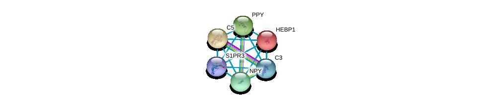 http://string-db.org/version_10/api/image/networkList?limit=0&targetmode=proteins&caller_identity=gene_cards&network_flavor=evidence&identifiers=9606.ENSP00000350878%0d%0a9606.ENSP00000014930%0d%0a9606.ENSP00000223642%0d%0a9606.ENSP00000225992%0d%0a9606.ENSP00000242152%0d%0a9606.ENSP00000245907%0d%0a